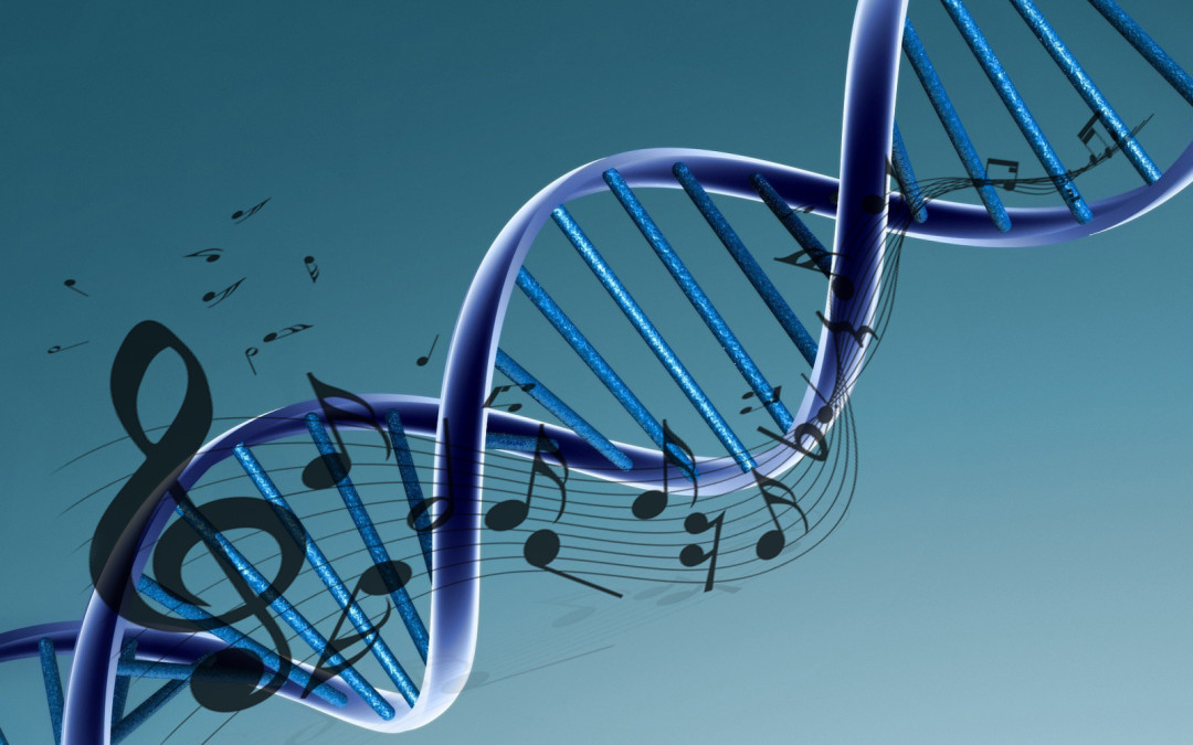 Each song has a DNA