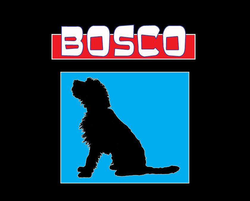 The Replicas Music Mascot Bosco
