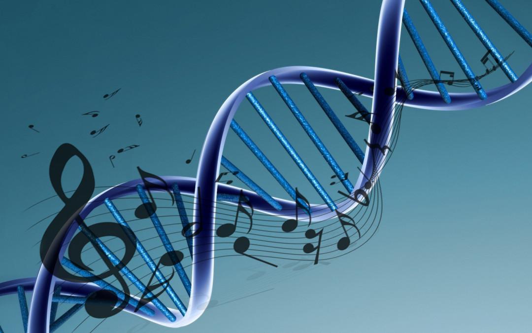 Each song has a DNA