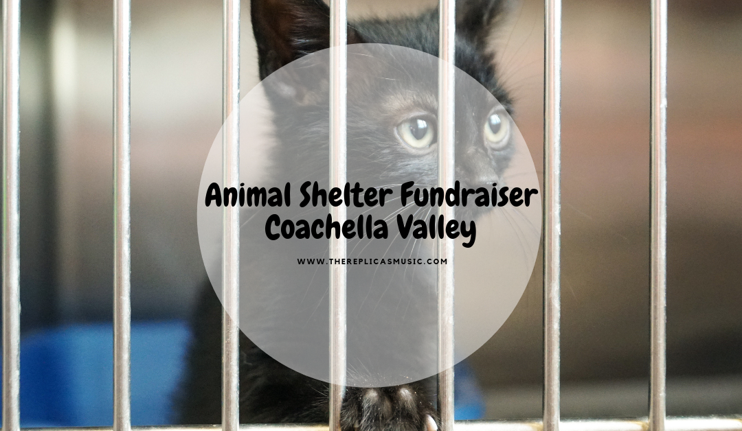 Animal Shelter Fundraiser Coachella Valley