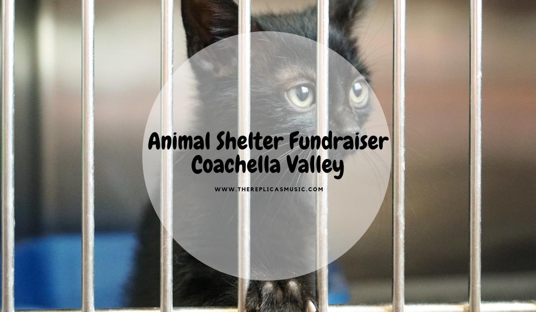 Animal Shelter Fundraiser Coachella Valley